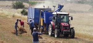 Gercüş'te saman fiyatı yükselince çiftçiler kendi samanlarını üretmeye başladı