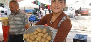 Tokat'ta patates 2 lira, soğan 3 liradan satılıyor