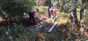 Şehit Doğanlaroğlu'nun mezarı yenilendi