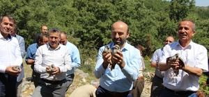 Seydişehir'de doğaya keklik salındı