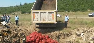 4 ton midye ele geçirildi: 20 gözaltı