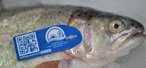 (Özel Haber) Balıklar mavi karekod ile takip edilecek İç Anadolu Bölgesi'nde ilk defa uygulanan projede balıklar üretimden tüketime kadar takip edilebilecek Telefona yüklenecek olan uygulama ile güvenli bir şekilde balık tüketilebilecek