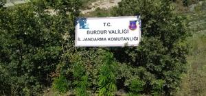 Burdur'da uyuşturucu operasyonu: 1 tutuklama