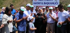 Şehitler için fidanlar dikildi AK Parti'den 15 Temmuz Demokrasi Şehitleri Hatıra Ormanı