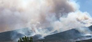 Torbalı'da yangın var, Kuşadası'na kül yağıyor