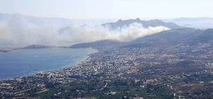 Bodrum'daki yangın kontrol altına alındı Tatilciler neye uğradığını şaşırdı Denizden çıkan yangına müdahale etti 23 hektarlık alan kül oldu