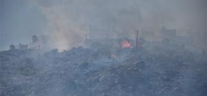 GÜNCELLEME - Muğla'da makilik ve otluk alanda yangın