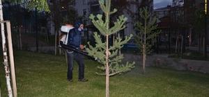 Palandöken Belediyesi park ilaçlama çalışmalarına başladı