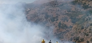 Malatya'da çalılık yangını