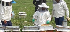Arıcılar daha verimli bal elde etmek için eğitiliyor