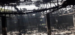 Sakarya'da tavuk çiftliği yangını