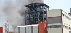 Kırklareli'nde fabrika yangını