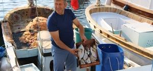 Erdek'te yarım asırlık balık mezatı