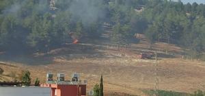 Karadağ Hatıra Ormanı 8. kez yandı