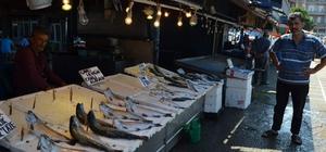 Türkiye bu sezon palamuta doyacak Balıkçılar 1 Eylül'de başlayacak yeni sezon için umutlu konuştu