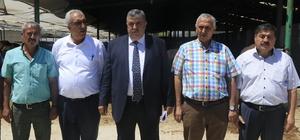 """""""Besi danasının kilosu 22 lira"""""""