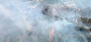 Ziraat alanında başlayan yangın ormana sıçradı Yangında 80 dönüm alan zarar gördü