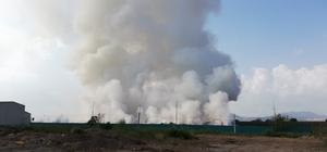 Osmaniye'deki yangın sürüyor Dün akşam geri dönüşüm fabrikasında atıkların depolandığı bölgede çıkan yangının kendiliğinden sönmesi bekleniyor