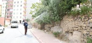 Niğde Belediyesi Sarıkız Örümcek ilaçlaması yapıyor