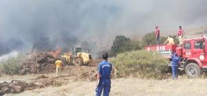 Hurdalık alanda yangın Yangının makilik alana sıçramaması için yangın kontrol altına alınmaya çalışılıyor