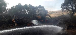 Hurdalık alanda çıkan yangın kontrol altında Yangın makilik alana sıçramadan kontrol altına alındı