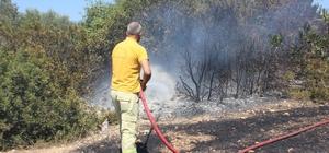 Her taraf yandı, kimse keyfini bozmadı Piknikçilerin yaktığı ateşten çıkan yangında onlarca ağaç yandı