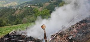 Ordu'da 3 kişi yanarak hayatını kaybetti