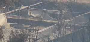 Antalya'daki yangın kontrol altına alınıyor 45 hektarlık alanın zarar gördüğü yangında vatandaşlar büyük panik yaşadı Soğutma çalışmaları yapılan bölgelerde vatandaşlar evlerine dönmeye başladı