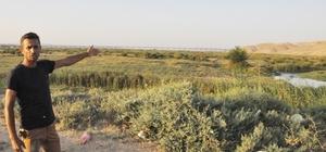 10 milyon TL yatırım yapılan Zilek Su Kaynakları kurudu