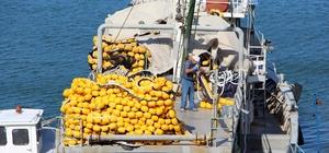 Balıkçılar gün sayıyor Yeni sezon hazırlıklarını tamamlamak üzere olan balıkçılar sezondan oldukça umutlular Balıkçılar, şu ana kadar çok güzel belirtiler aldıklarını, özellikle çingene palamudunun  İstanbul'dan Hopa'ya kadar olan alanda bol miktarda görüldüğünü söylediler