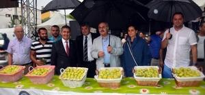 Buharkent'in taze inciri festivalle tanıtıldı