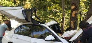 Sağlık çalışanlarının bulunduğu otomobil ağaca çarptı: 1'i ağır 4 yaralı