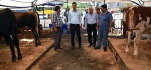 Çorlu'da kurban satış merkezi hazır