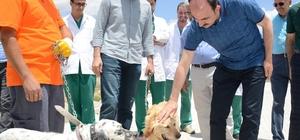 """Konya'da sokak hayvanları için """"Bir Kap Yemek Bir Kap Su"""" kampanyası"""