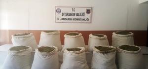 Diyarbakır'da 284 kilo esrar ve 2 bin kök kenevir ele geçirildi