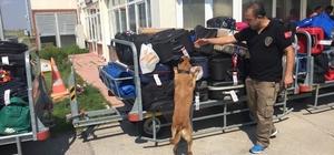 Narkotik köpeği 'Cankız' havaalanında uyuşturucuya göz açtırmıyor