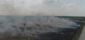 """Çukurova'da mısır hasadıyla birlikte anız yangınları da başladı Sorumsuz çiftçilerin tarlalarını kolay yoldan temizlemek maksadıyla yaktığı anızlar Adanalıları her sene isyan ettiriyor İl Tarım ve Orman Müdürü Muhammet Ali Tekin: """"Anız yakanlara 6 aydan 3 yıla kadar hapis cezası var"""""""