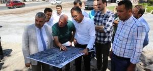 Başkan Çelik Asri Mezarlıkta incelemelerde bulundu