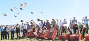 Kırklareli'nde 2 bin adet keklik doğaya bırakıldı