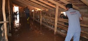 Elmalı'daki selin ardından Ekiplerin çamurla mücadelesi devam ediyor