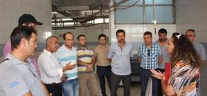 Antalya'da kurban kesim kursu Kursiyerlere kurban kesimi uygulamalı olarak anlatıldı