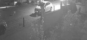 Tekirdağ'da motosiklet hırsızlığı kamerada
