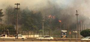 Bursa'daki yangını söndürmek için Balıkesir ve Karabük'ten helikopter, Ankara'dan uçak istendi