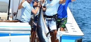 Ünlü iş adamlarının katıldığı balık turnuvasında 118 kiloluk Orkinos tutuldu