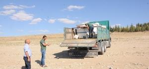 Gümüşler Barajı'na 40 bin sazan bırakıldı