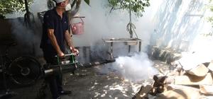 Akyazı Belediyesi sağlık işleri yoğun tempo çalışıyor