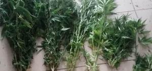 İskenderun'da uyuşturucu operasyonları: 23 gözaltı