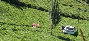Trabzon'da otomobil çay bahçesine uçtu: 1 ölü