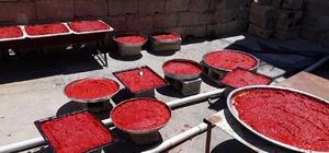 Kilis'te Biber salçası yapılmasına başlandı