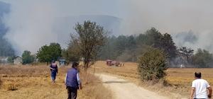 Bolu'da orman yangını Bölgeye çok sayıda itfaiye ekibi sevk edildi Yangını söndürme çalışmaları sürüyor